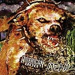American Dog Mean