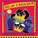 Sly & Robbie Chaka Demus & Pilers Riddims