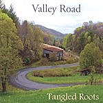 Tangled Roots Valley Road