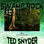Ted Snyder Swamp Rock (Ver. 2)
