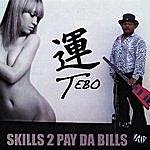 Tebo Skills 2 Pay Da Bills
