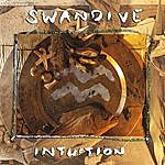 Swan Dive Intuition