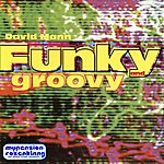 David Mann Funky And Groovy - Hot Funk Lounge And Party