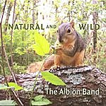 The Albion Band Natural And Wild