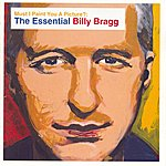 Billy Bragg Must I Paint You A Picture?: The Essential Billy Bragg