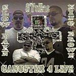 G'Fellas Gangster 4 Life