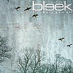 Bleek I'll Bury You All (2-Track Single)