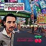 Richard Grey Perceptions Of Pacha