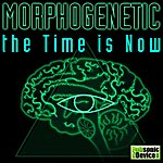 The Morphogenetic The Time Is Now