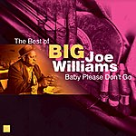 Big Joe Williams Baby Please Don't Go(The Best Of)