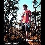 Dave Kaye Wandering
