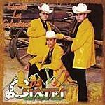 Los Cuates De Sinaloa Escuché Las Golondrinas