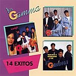 Los Gamma 14 Exitos