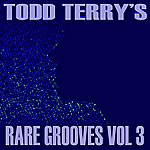 Little Louie Vega Todd Terry's Rare Grooves, Vol. III