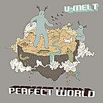 U-Melt Perfect World