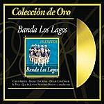 Banda Los Lagos Coleccion De Oro