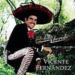 Vicente Fernández Lobo Herido