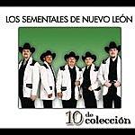 Los Sementales De Nuevo Leon 10 De Colección