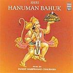 Ravindra Sathe Shri Hanuman Bahuk