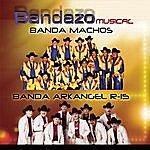 Banda Machos Bandazo Musical