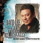 David Lee Garza 20/20 MMXX Twenty-Veinte