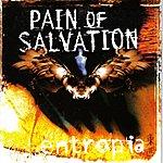Pain Of Salvation Entropia