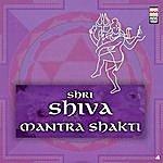 Ravindra Sathe Shri Shiva Mantrashakti