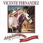 Vicente Fernández Mexicanísimo