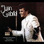 Juan Gabriel En El Palacio De Bellas Artes (Remasterizado)
