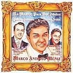 Marco Antonio Muñiz Un Marco Para Dos Idolos Pedro Infante Y Javier Solis