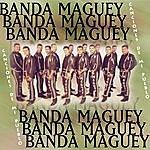 Banda Maguey Canciones De Mi Pueblo