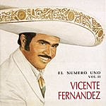 Vicente Fernández El Numero Uno Vol. II