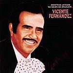 Vicente Fernández Mientras Ustedes No Dejen De Aplaudir...