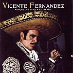Vicente Fernández Aunque Me Duela El Alma
