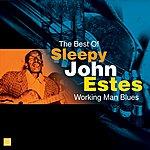 Sleepy John Estes Working Man Blues(The Best Of)