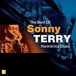 Sonny Terry Harmonica Blues(The Best Of)