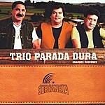 Trio Parada Dura Coleção De Ouro Da Música Sertaneja: Trio Parada Dura (Grandes Sucessos)