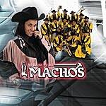 Banda Machos El Próximo Tonto (Single)
