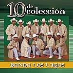 Banda Los Lagos 10 De Colección