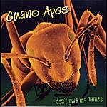 Guano Apes Don' T Give Me Names