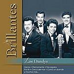 Los Dandys Brillantes- Los Dandys