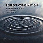 Perfect Combination Perfect Combination - Single