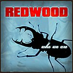Redwood Who We Are (Single)