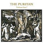 Puritan Lithium Gates