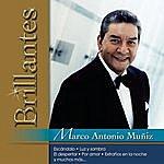 Marco Antonio Muñiz Brillantes - Marco Antonio Muñiz