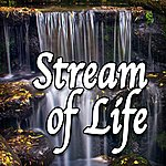 Natural Sounds Stream Of Life (Nature Sounds)