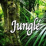 Natural Sounds Jungle (Nature Sounds)