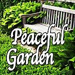 Natural Sounds Peaceful Garden (Nature Sounds)