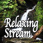 Natural Sounds Relaxing Stream (Nature Sounds)