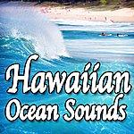 Natural Sounds Hawaiian Ocean Sounds (Nature Sounds)